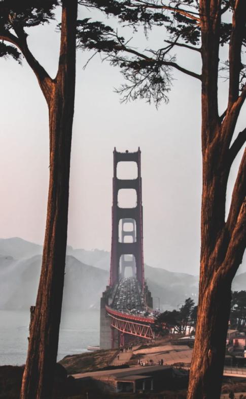 d-vsl.com The-Spirit-Of-San-Francisco-California-Trave5df319a5ee8a3d86dd77d3eeacc833a3